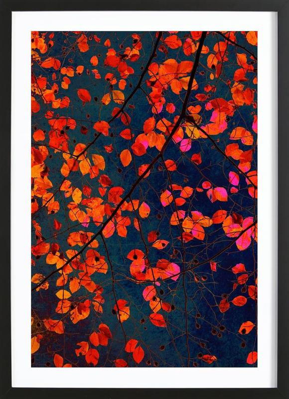 Furious Red Leave as Poster in Wooden Frame by Iris Lehnhardt ...