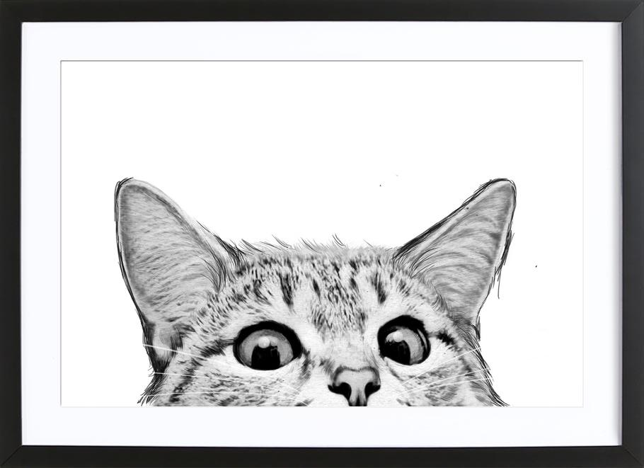 Cat as Poster in Wooden Frame by Laura Graves   JUNIQE UK