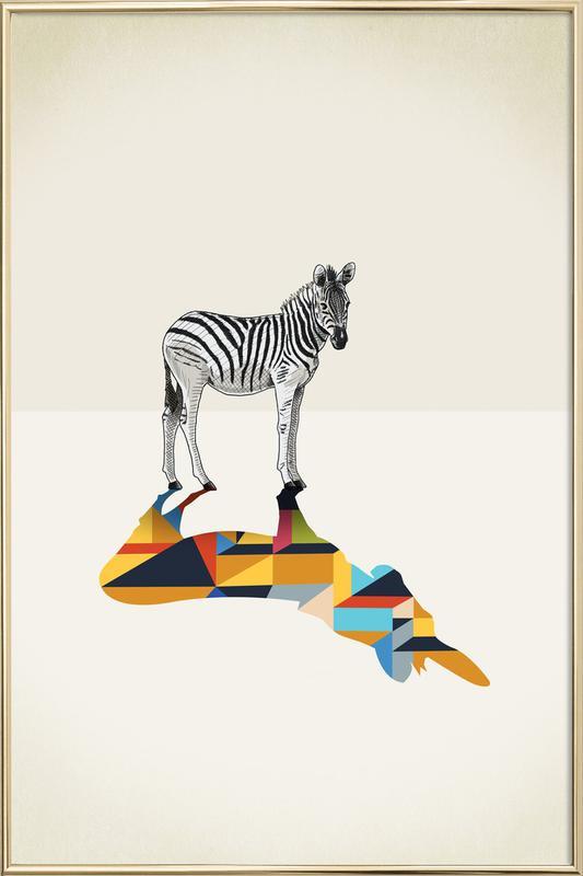 Walking Shadow - Zebra as Poster in Aluminium Frame   JUNIQE UK