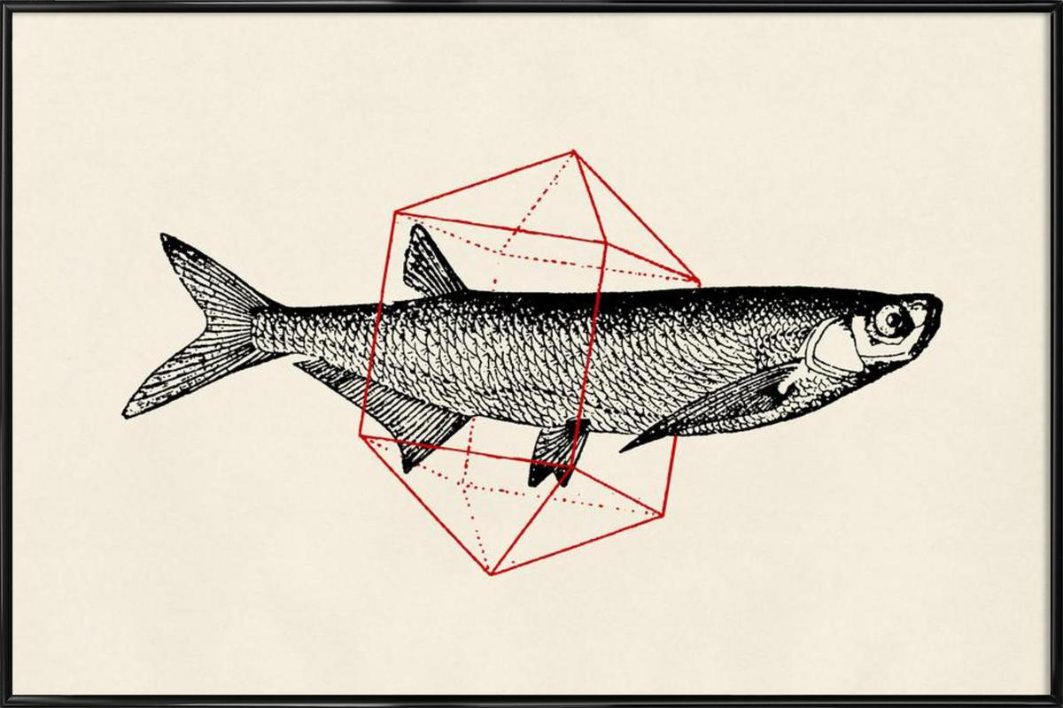 Fish in Geometrics II as Poster in Standard Frame | JUNIQE