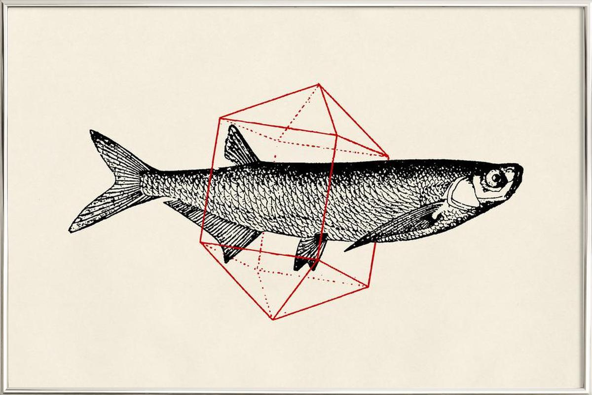 Fish in Geometrics II as Poster in Aluminium Frame | JUNIQE