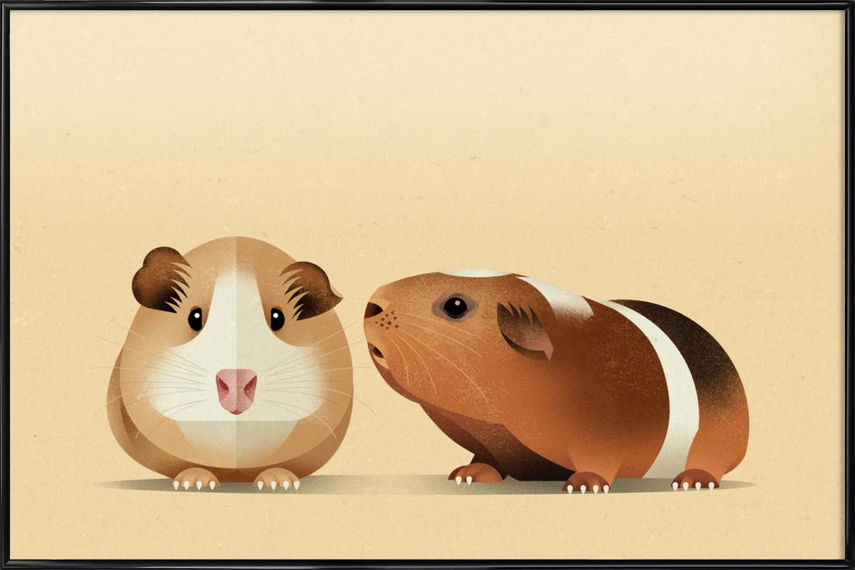 Guinea pig as poster in standard frame by dieter braun juniqe jeuxipadfo Gallery