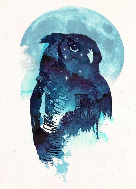 Midnight Owl Canvas Print Juniqe Uk