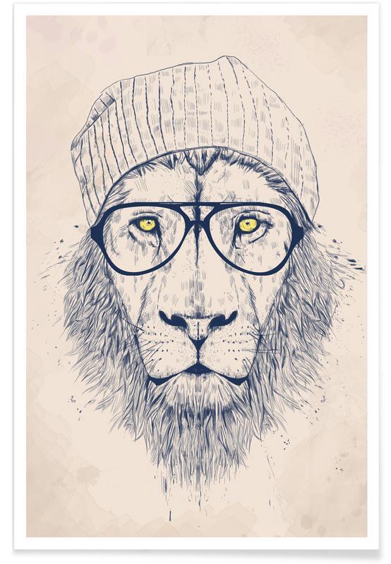 Cool lion als Poster von Balázs Solti | JUNIQE