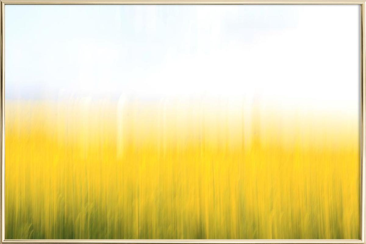 Fields Of Gold 99 as Poster in Aluminium Frame | JUNIQE