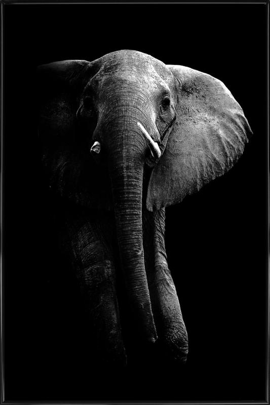elephant wild photo art as poster in standard frame by 1x juniqe - Cadre Elephant