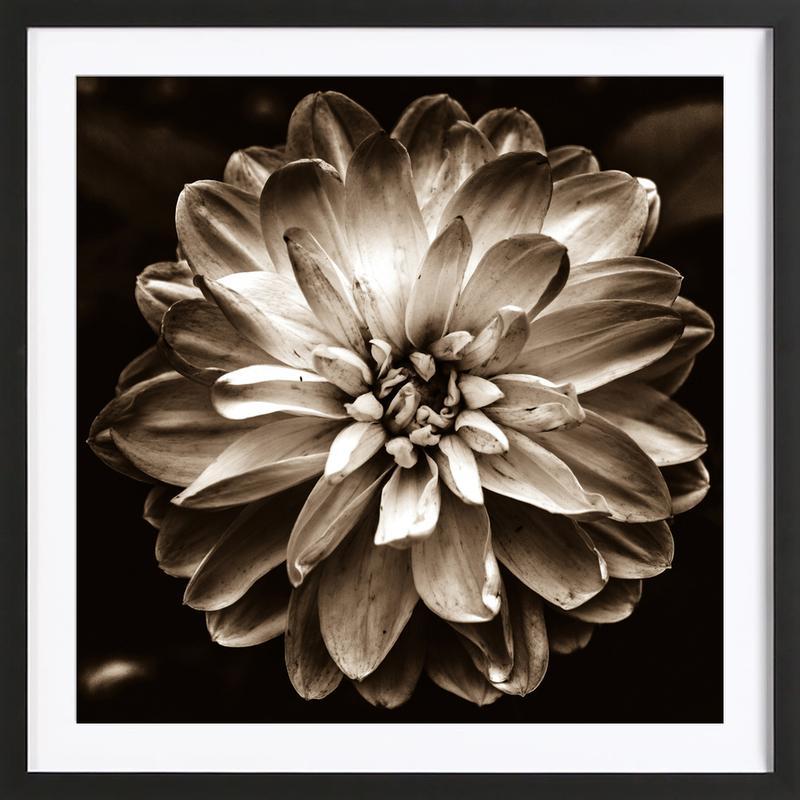 flower of life sepia als poster im holzrahmen juniqe. Black Bedroom Furniture Sets. Home Design Ideas