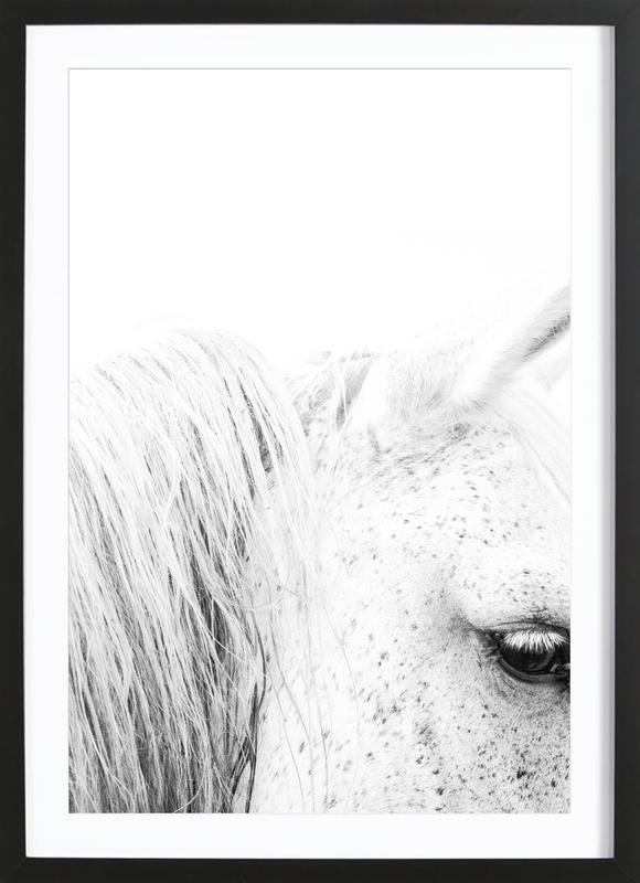 White Horse II as Poster in Wooden Frame by Victoria Frost | JUNIQE UK