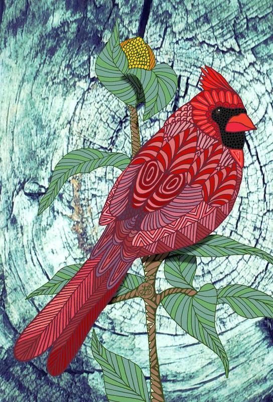 virginia cardinal als acrylglasbild von angelika parker juniqe. Black Bedroom Furniture Sets. Home Design Ideas