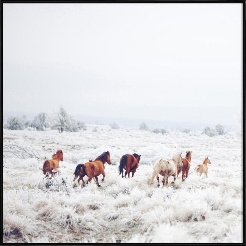 Winter Horses as Poster in Standard Frame by Kevin Russ | JUNIQE