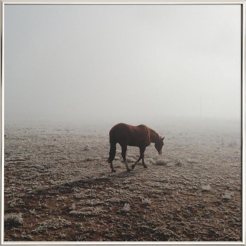 Fogged Horse as Poster in Aluminium Frame by Kevin Russ | JUNIQE