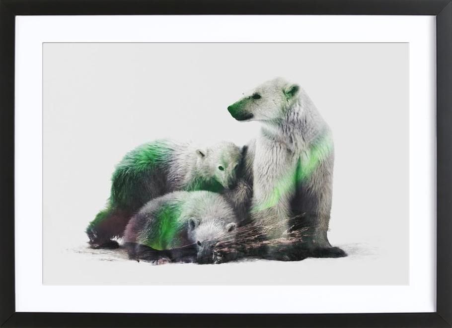 Artic Polar Bear Family as Poster in Wooden Frame | JUNIQE