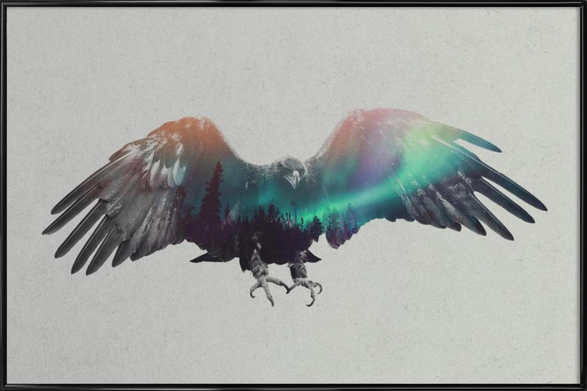 Eagle as Poster in Standard Frame by Andreas Lie | JUNIQE