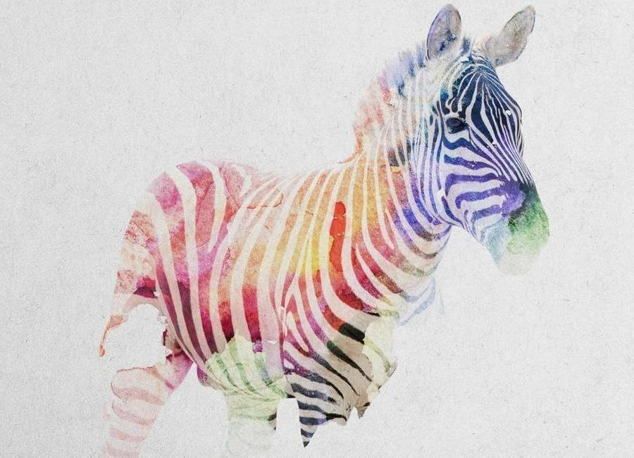 Zebra als canvas print door andreas lie juniqe home wanddecoratie canvas prints altavistaventures Image collections