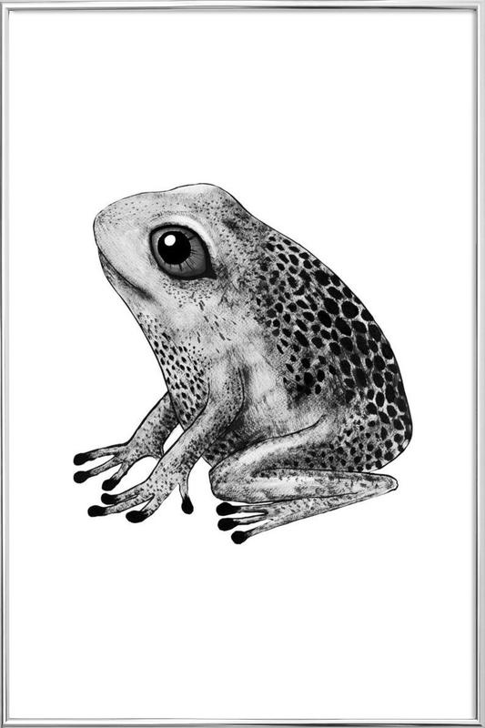 Frog as Poster in Aluminium Frame by Tvinkla | JUNIQE