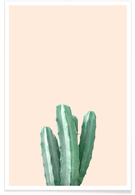 Pink Cactus As Premium Poster By Chris Abatzis Juniqe