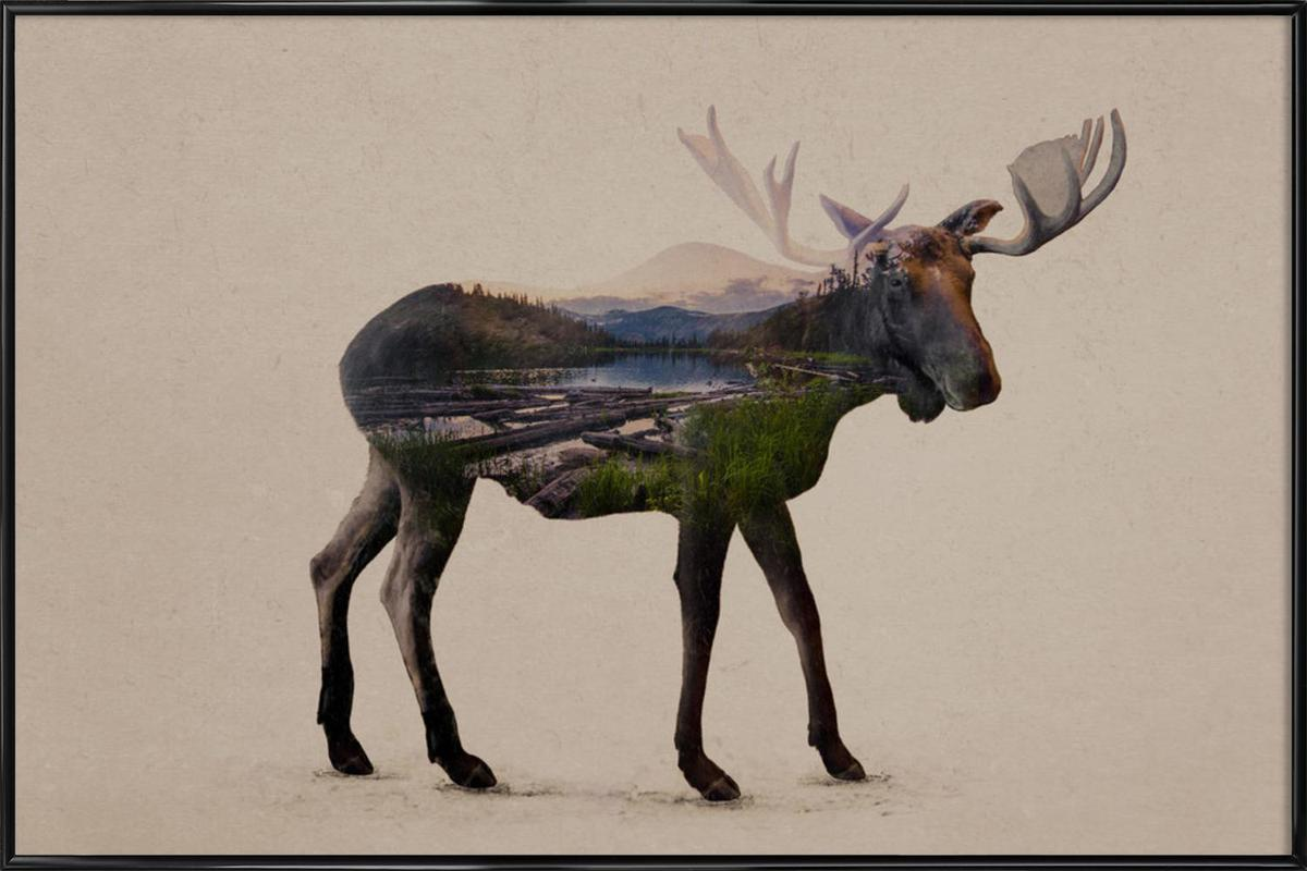 Moose as Poster in Standard Frame by Davies Babies | JUNIQE