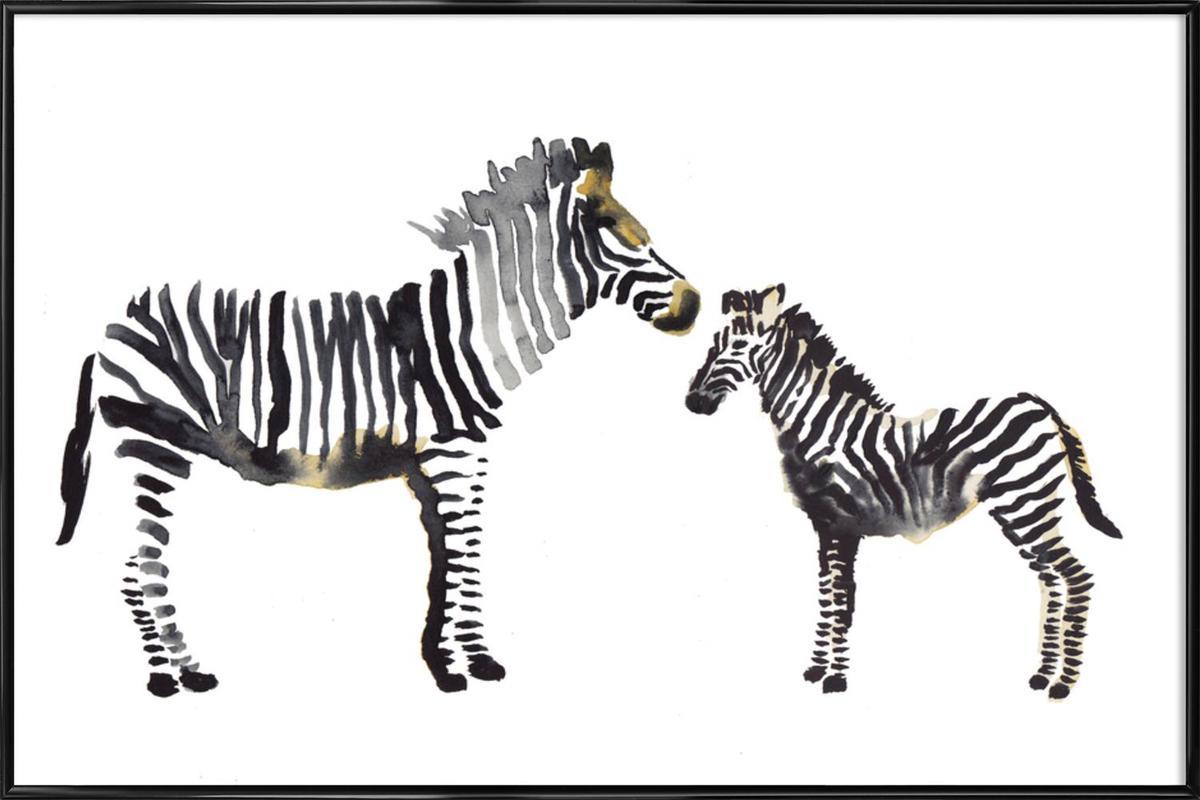 Zebra as Poster in Standard Frame by Farina Kuklinski | JUNIQE