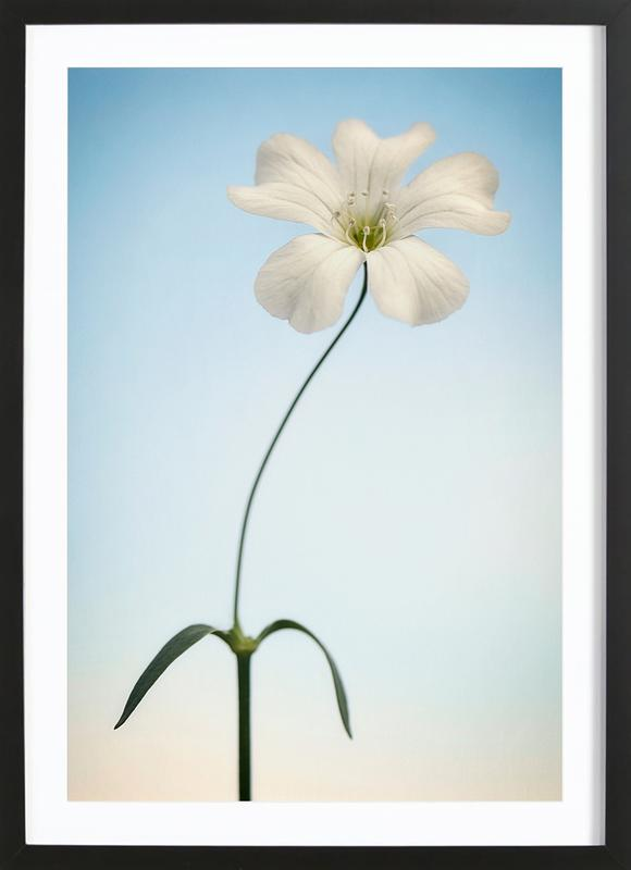Tiny White as Poster in Wooden Frame by Lotte Grønkjær | JUNIQE