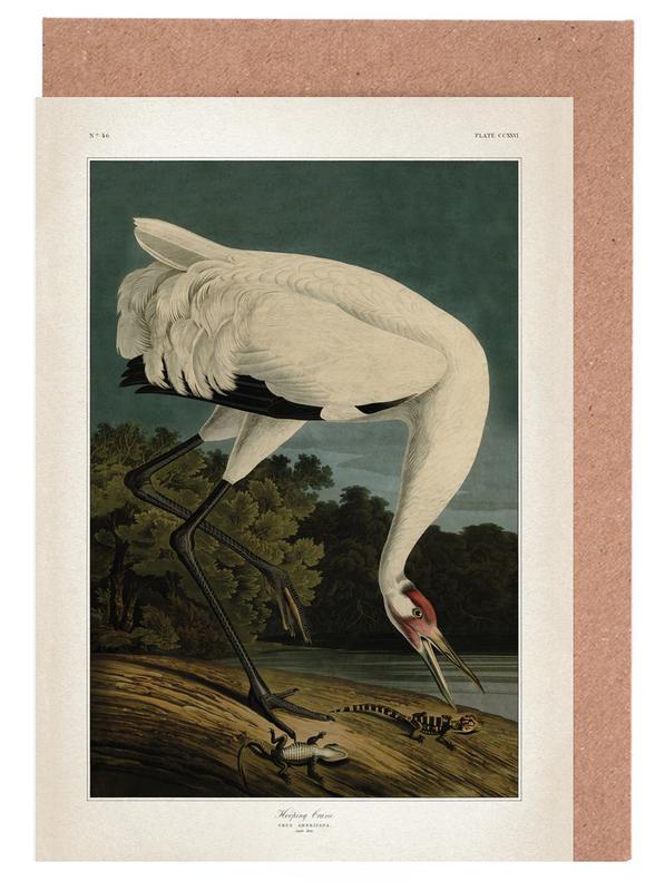 Hooping crane audubon as greeting card set juniqe m4hsunfo