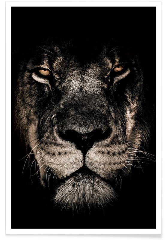 Dark Lion Poster Juniqe Uk