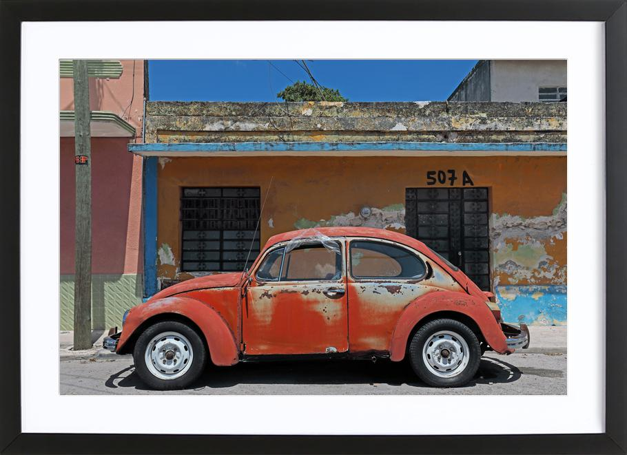Mexican Beetle 1 as Poster in Wooden Frame by Stefanie Sandl | JUNIQE