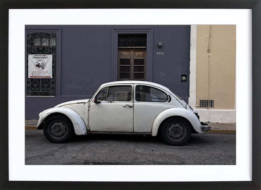 Mexican Beetle 20 as Poster in Wooden Frame by Stefanie Sandl ...