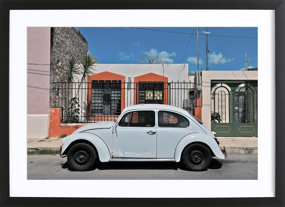 Mexican Beetle 23 as Poster in Wooden Frame by Stefanie Sandl ...