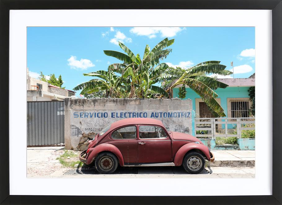 Mexican Beetle 3 as Poster in Wooden Frame by Stefanie Sandl | JUNIQE