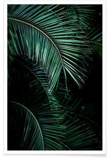 035b969d38a5 Palm Leaves 9hos Mareike BöhmerPlakatfrom 49