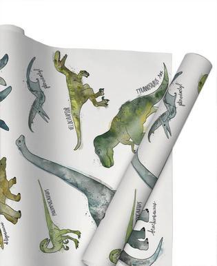 Dinosaurs Papier cadeau