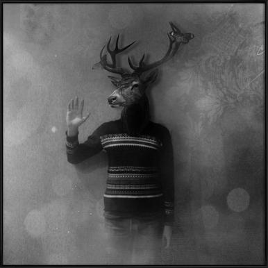Animals in my room - Deer Framed Poster