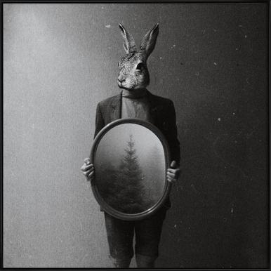 Animals in my room - Rabbit Framed Poster