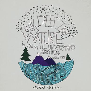 Einstein Nature acrylglas print