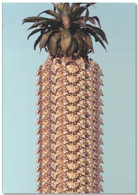 Pineapple notitieblok