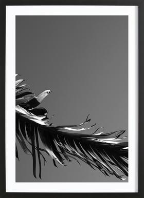 LA State of Mind (Venice Beach) ingelijste print