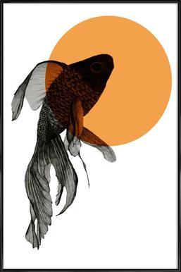 Goldfish Framed Poster