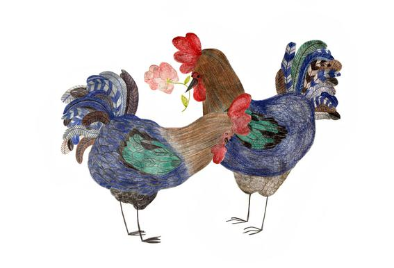 Roosters in Love Alu-Dibond Druck