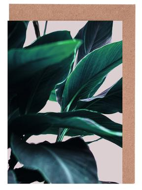 Palm Leaves 4 Greeting Card Set