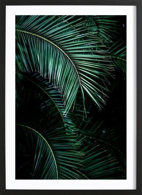 Palm Leaves 9 ingelijste print