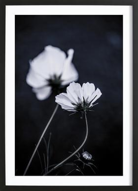 Wild Flowers 2 Framed Print