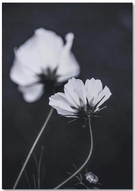 Wild Flowers 2 Anteckningsbok