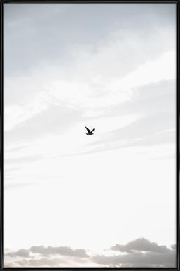 Flying High -Bild mit Kunststoffrahmen