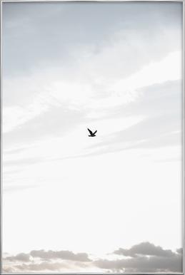 Flying High Poster im Alurahmen
