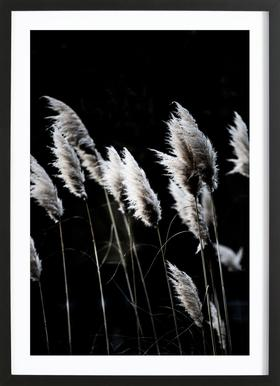 Grass 4 Poster im Holzrahmen