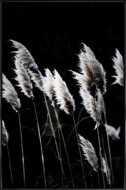 Grass 4 Poster im Kunststoffrahmen
