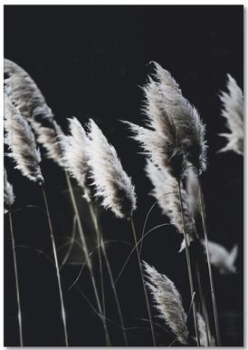 Grass 4 Notizbuch