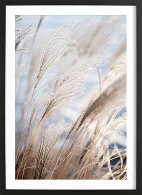 Grass 5 Poster in Wooden Frame