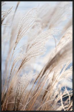 Grass 5 Poster im Kunststoffrahmen