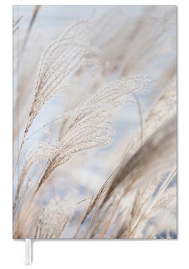 Grass 5 -Terminplaner